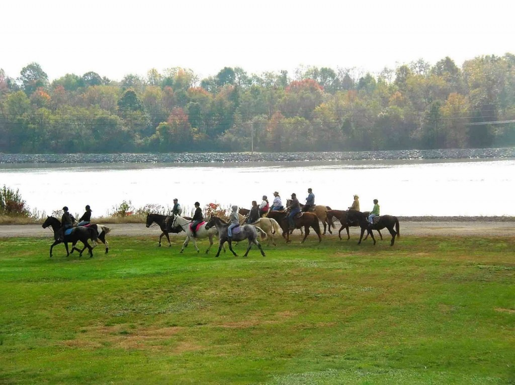 Group of several horse and riders along canal with autumn trees in background