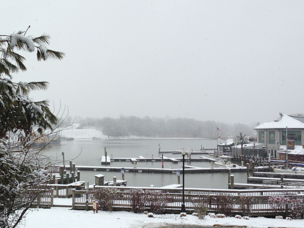 Snowy day on the basin